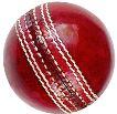 cricketball-9168819-431x300